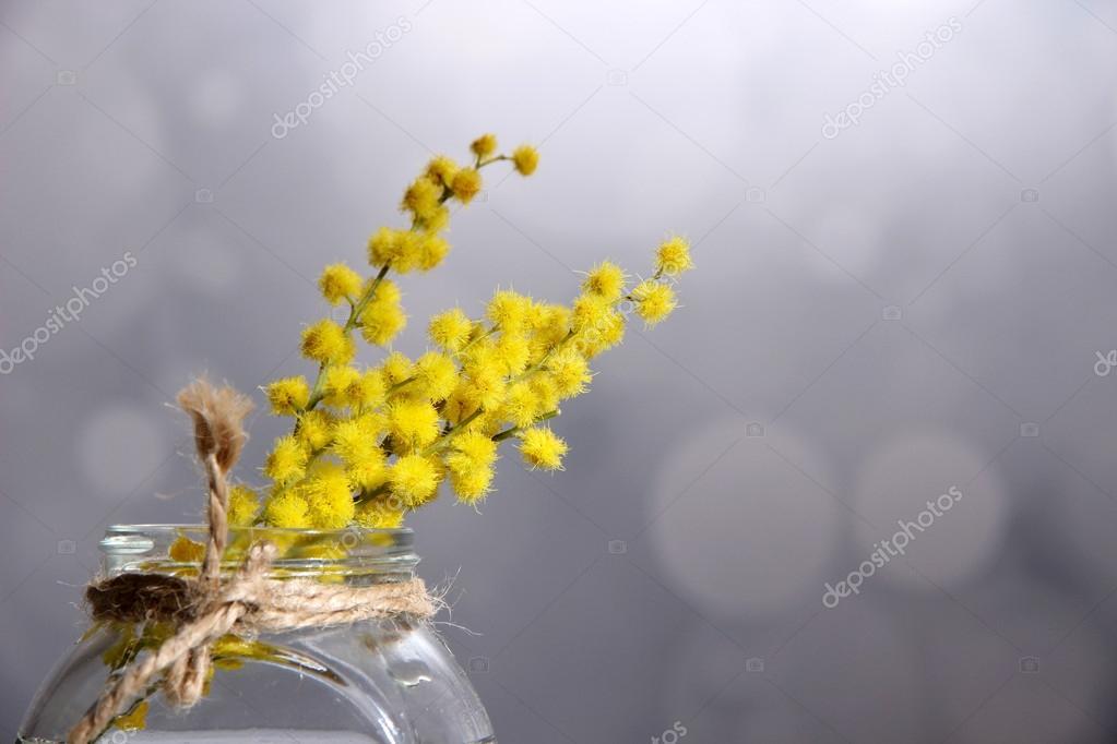 Ramoscelli di fiori di mimosa in vaso su un tavolo in for Mimosa in vaso