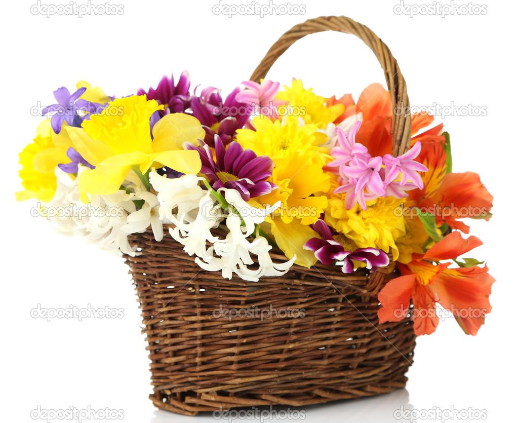Beautiful flowers in wicker basket isolated on white stock photo beautiful flowers in wicker basket isolated on white photo by belchonock izmirmasajfo
