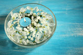 Beautiful snowdrops and candle in glass bowl with water, on blue background