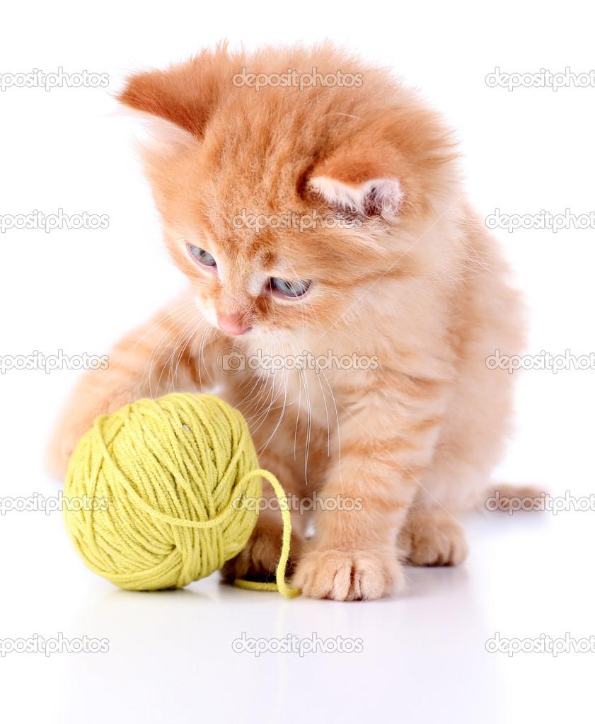 Котенок с клубком. Милый маленький Рыжий котенок и клубок ...