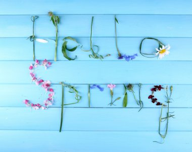 Inscription hello spring from leaves and flowers on wooden background