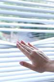 ženská ruka dělící lamely žaluzie s prstem vidět skrz