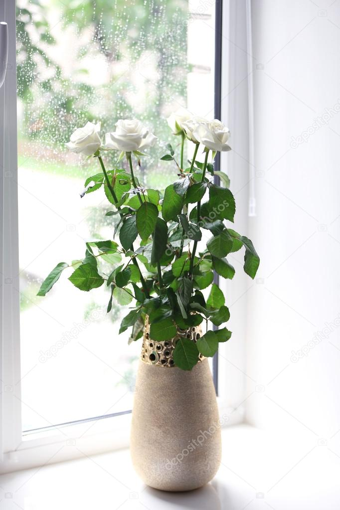 розы в вазе на окне фото