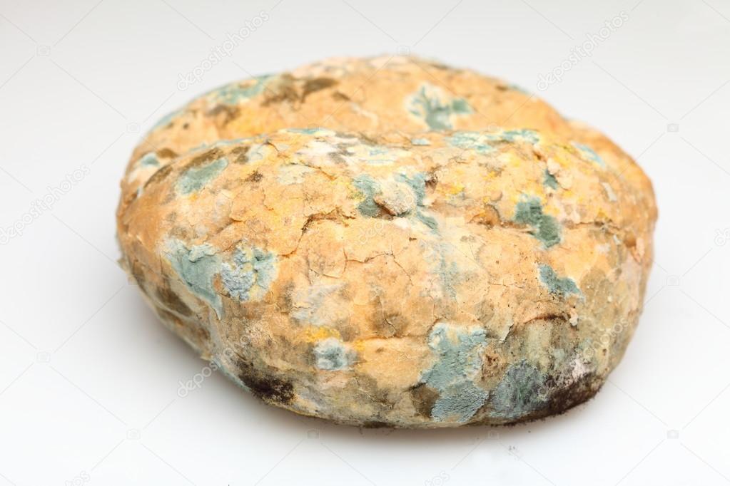 Afbeeldingsresultaat voor oud brood