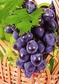 szőlő a kosárba