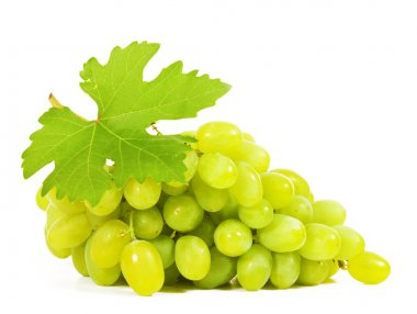 Grapes close-up