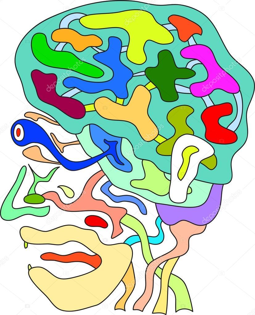 Anatomía cabeza Doodle — Archivo Imágenes Vectoriales ...