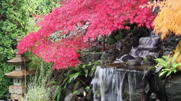 vodopád s javory a kamenné pagoda v barvách podzimu