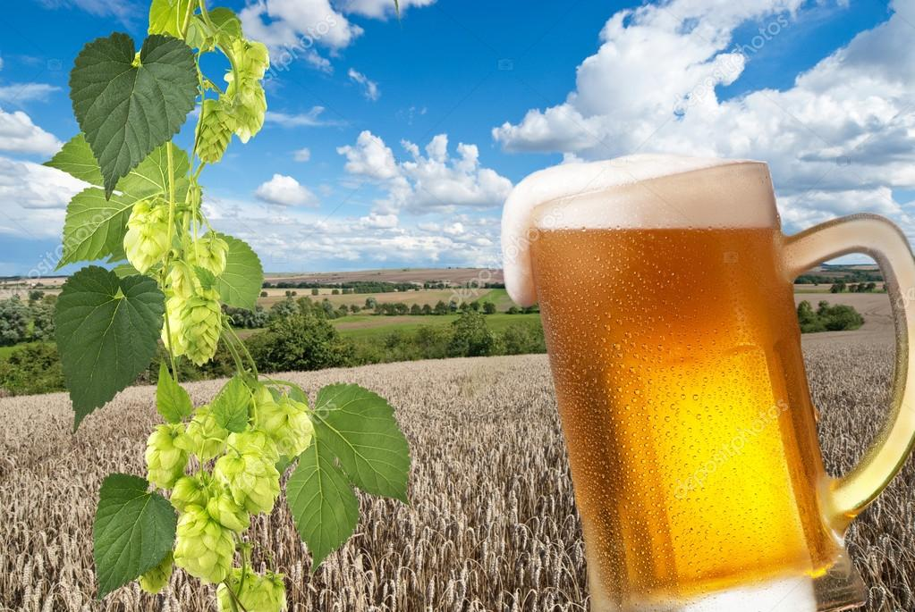 Beer glass with landscape