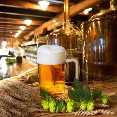 Beer Hops And Barley