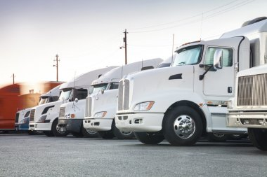 Different american trucks in a row