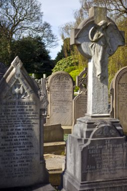 Eleanor Rigby Grave in Liverpool