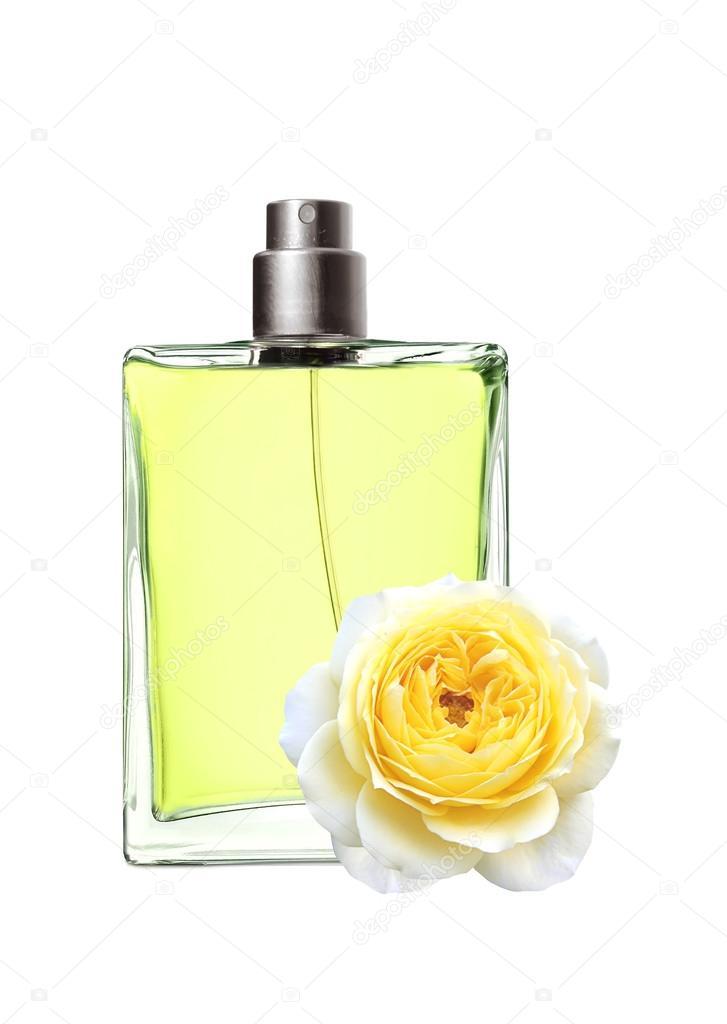De Dans Isolat Rose Et Parfum Femme Belle Fleur Une Bouteille kXiPTOZu