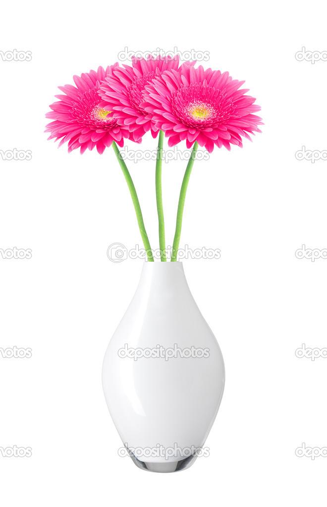 Beautiful pink gerbera daisy flowers in vase isolated on white beautiful pink gerbera daisy flowers in vase isolated on white background photo by pukach2012 mightylinksfo