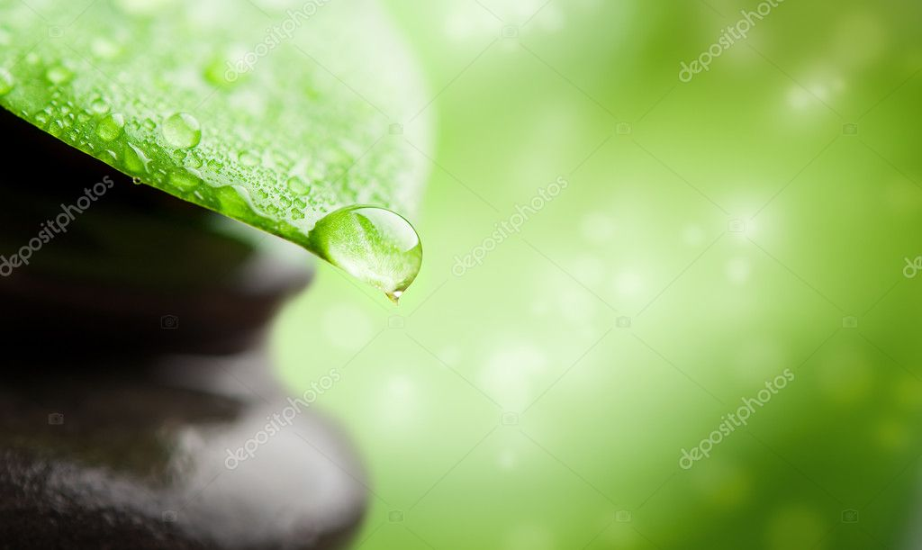 Green background spa with leaf and water drop