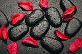 Fotografie background spa. black stones and red petals with water droplets