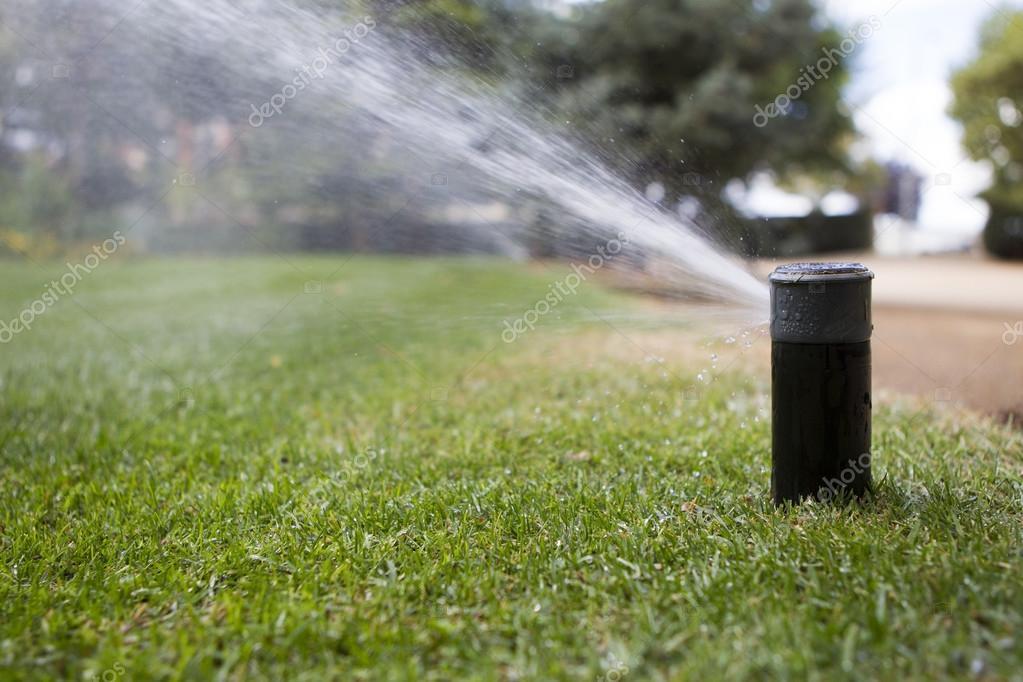 Irrigation of garden