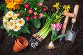 Fotografie Gartenarbeit