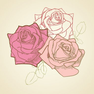 3 roses in vintage pastel pale pink and beige colors background.