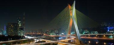 Beautiful bridge in Sao Paulo