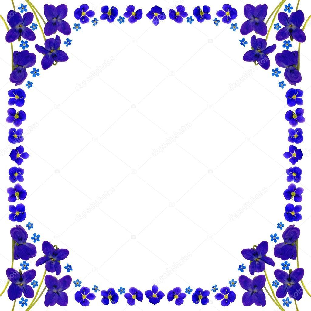 marco flores azul cuadrado blanco — Foto de stock © ManfredKoch ...