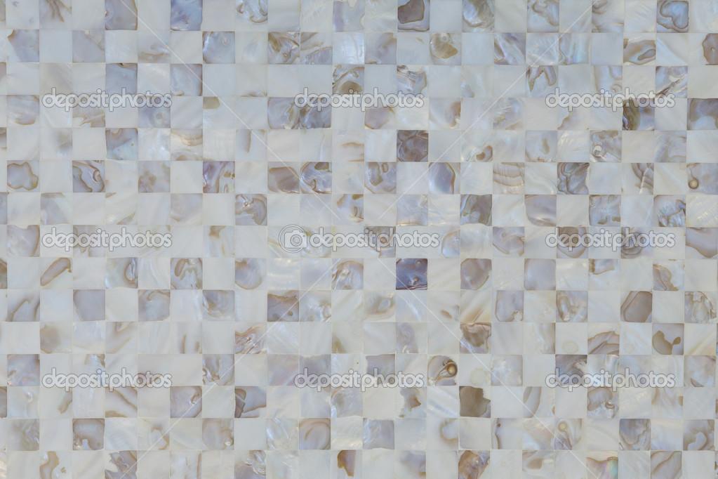 Guscio di ostrica con texture piastrelle di mosaico in colore