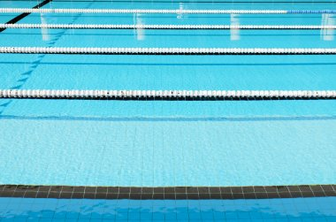 Swimming Pool and clearly marked lanes.