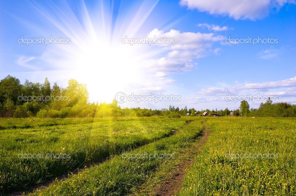 A Estrada Através Do Campo. Dia De Sol