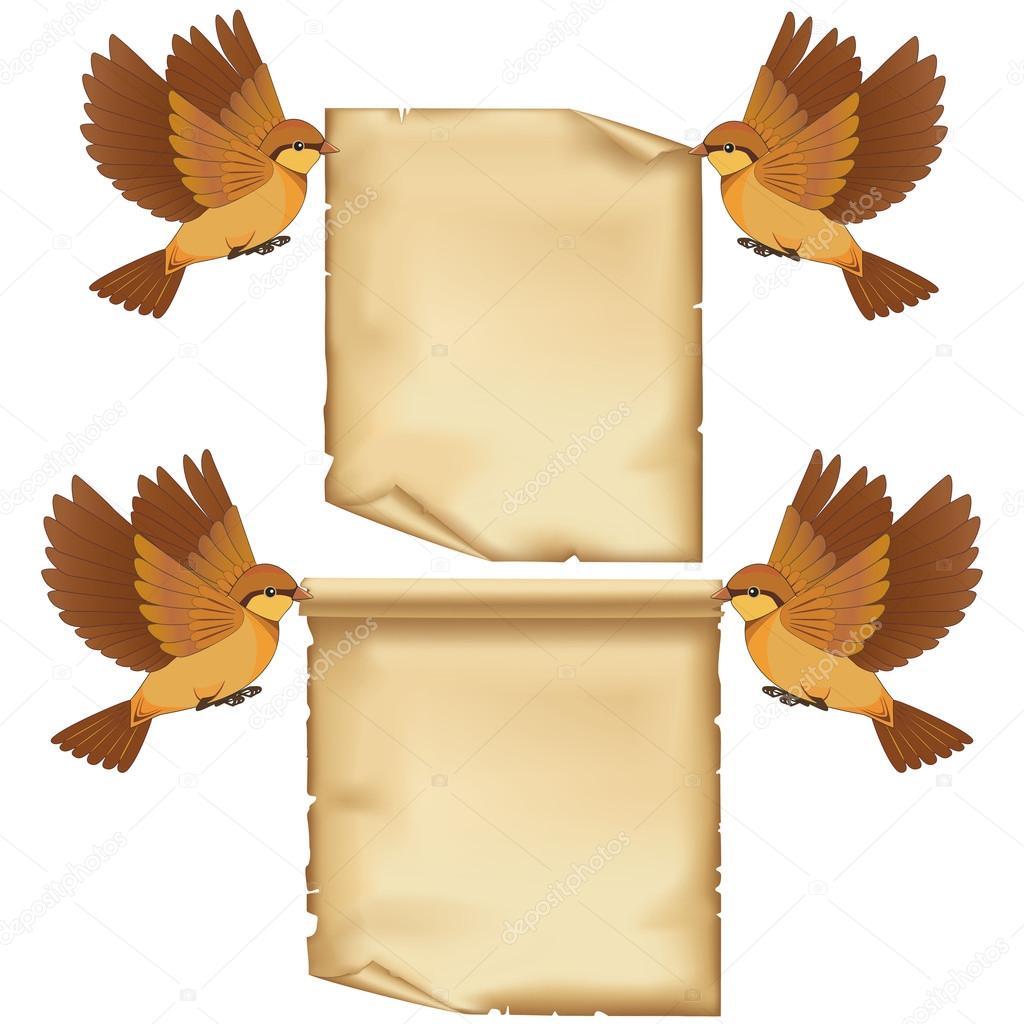 set of flying birds cartoon with sheet of paper u2014 stock vector