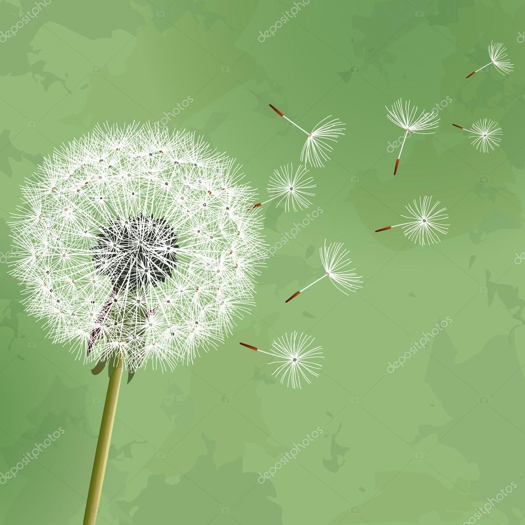 Vintage floral green background with flower dandelion
