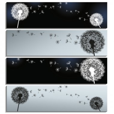 Set of horizontal banners black and grey with dandelions
