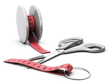 Diet, yoyo effect, jojo effekt