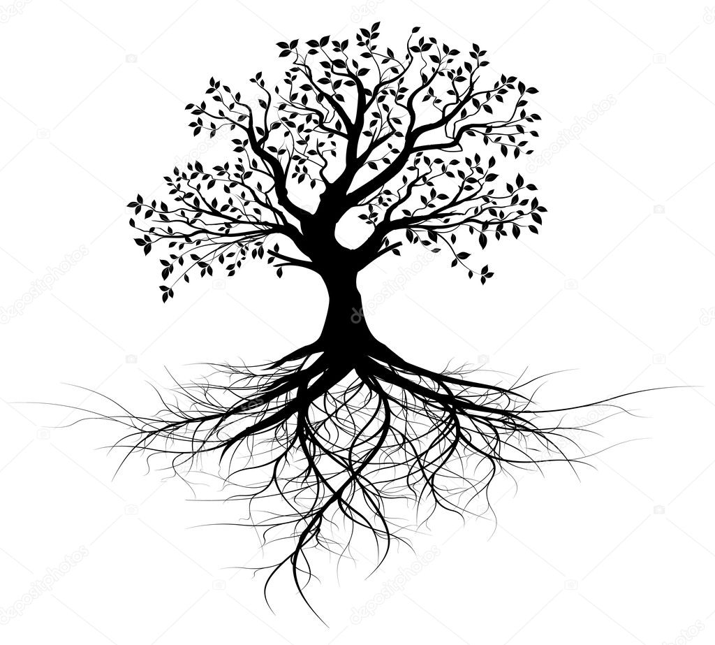 Vector black tree with roots