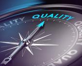 pojetí zabezpečování jakosti