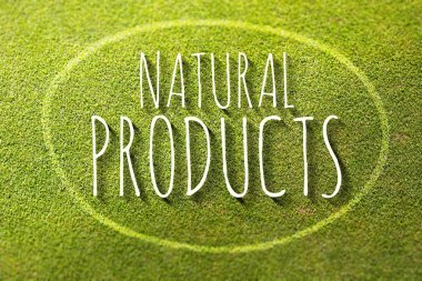 Natural products poster illustration of eco-friendly business
