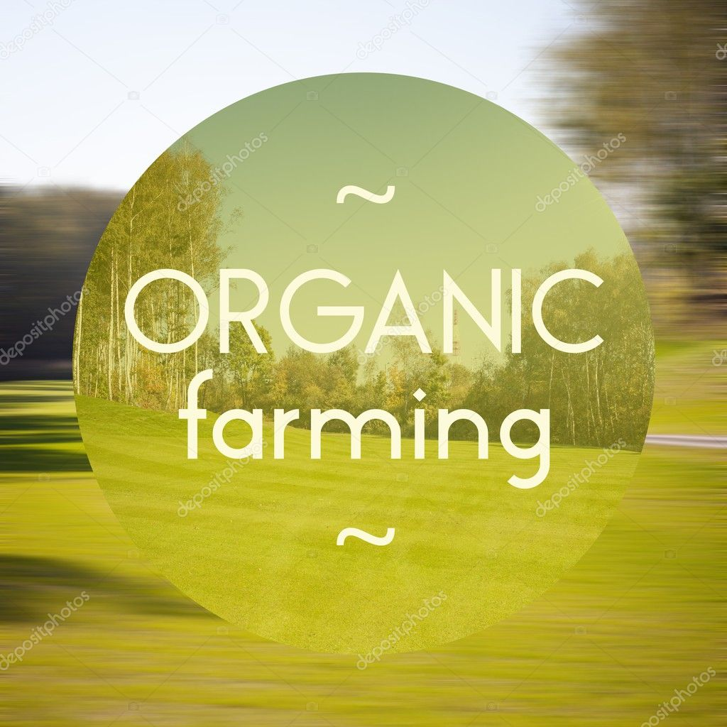 Organic farming poster illustration of eco-friendly products