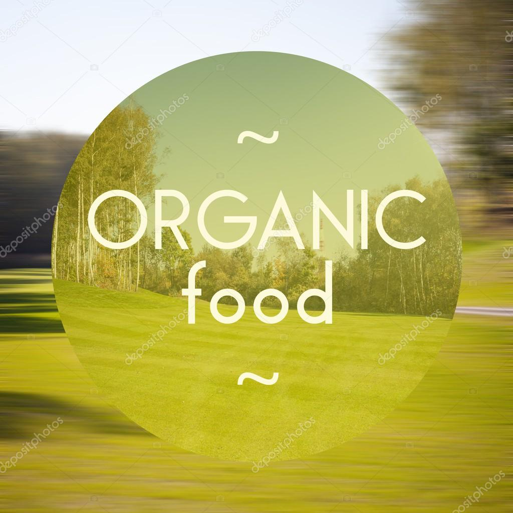 Organic food poster illustration of natural products