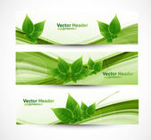 Fotografie Abstract header natural eco green lives wave vector