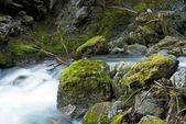 Cascades montagne creek