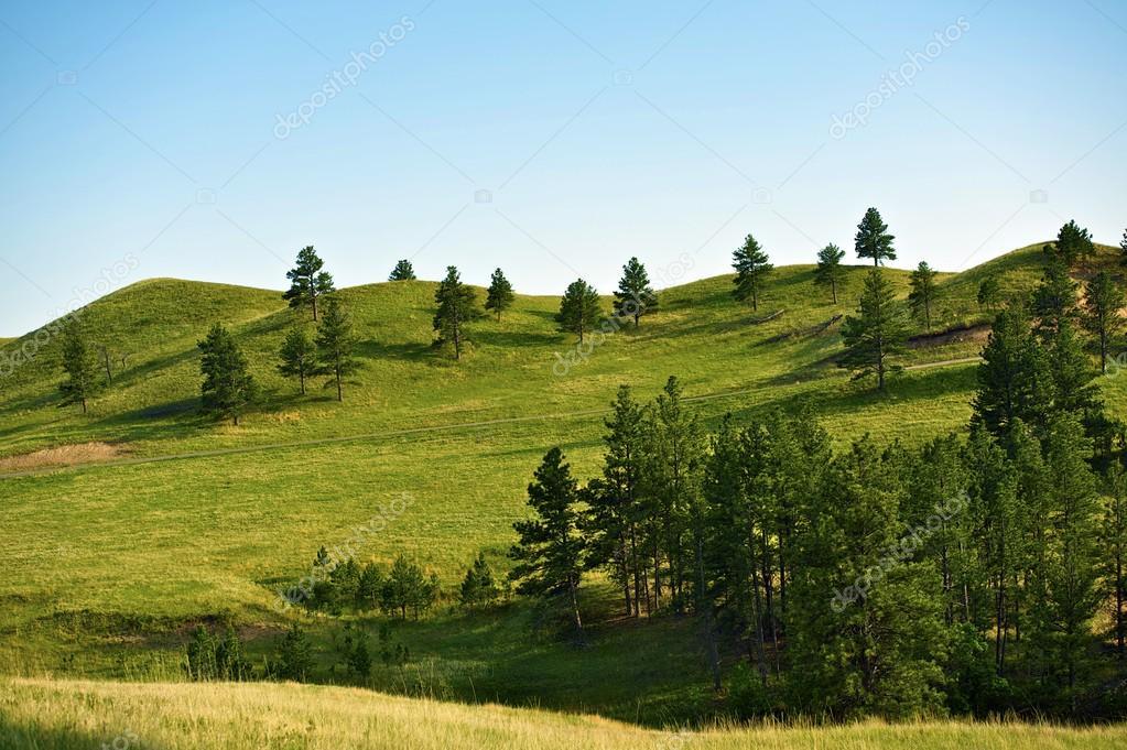 Фотообои Black Hills Landscape