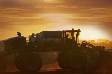 Tractor on the Corn Field