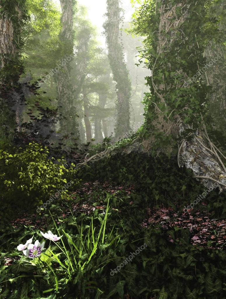 Misty Forest, 3d Computer Graphics