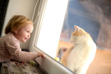 Little girl looking through a window at the cat