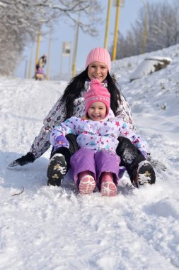 Girls are Sledding, winter fun, snow, family sledding stock vector