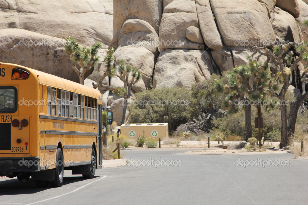 School bus in Joshua Tree park