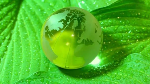 koncepce životního prostředí