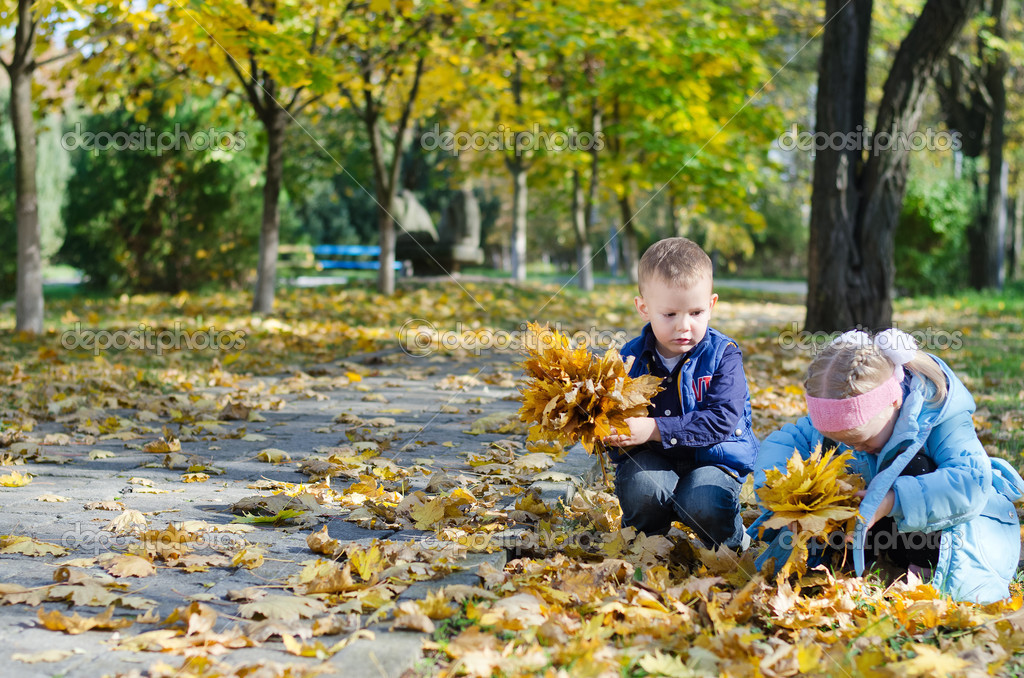 Youngsters collecting autumn leaves foto de stock - Descargar autumn leaves ...