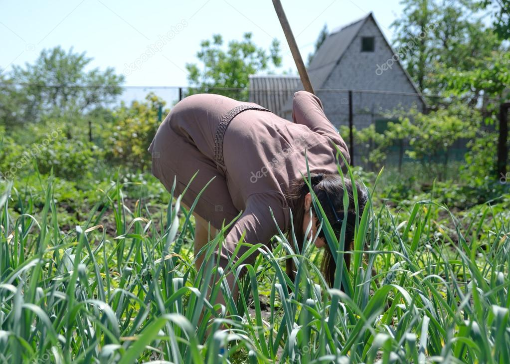 Woman working in the vegetable garden