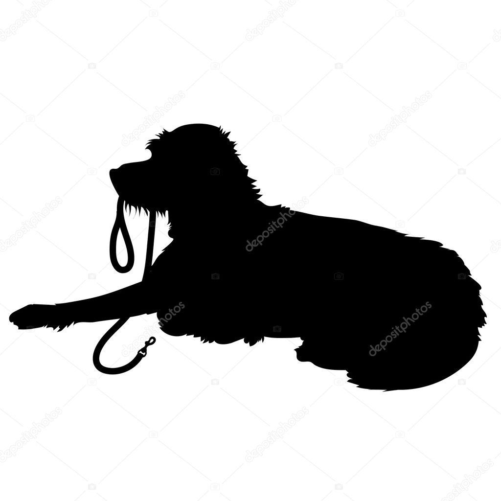 Dog On Lead Clip Art Black And White