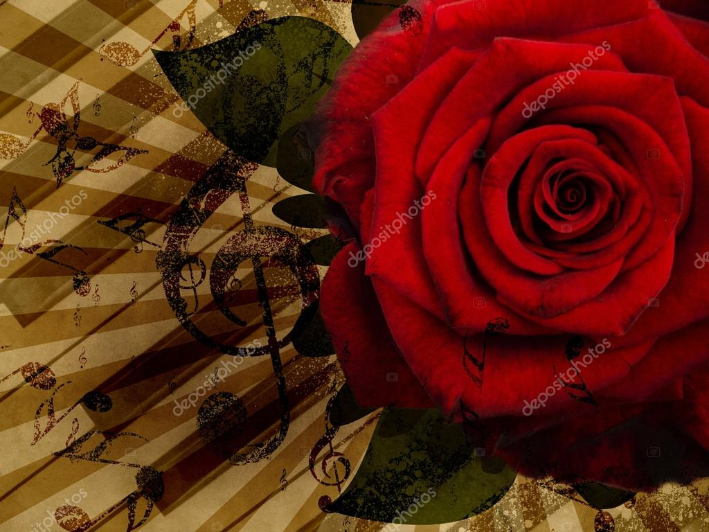 Music rose red background